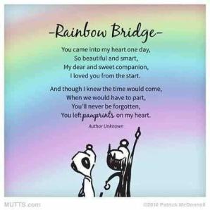 Raninbow bridge