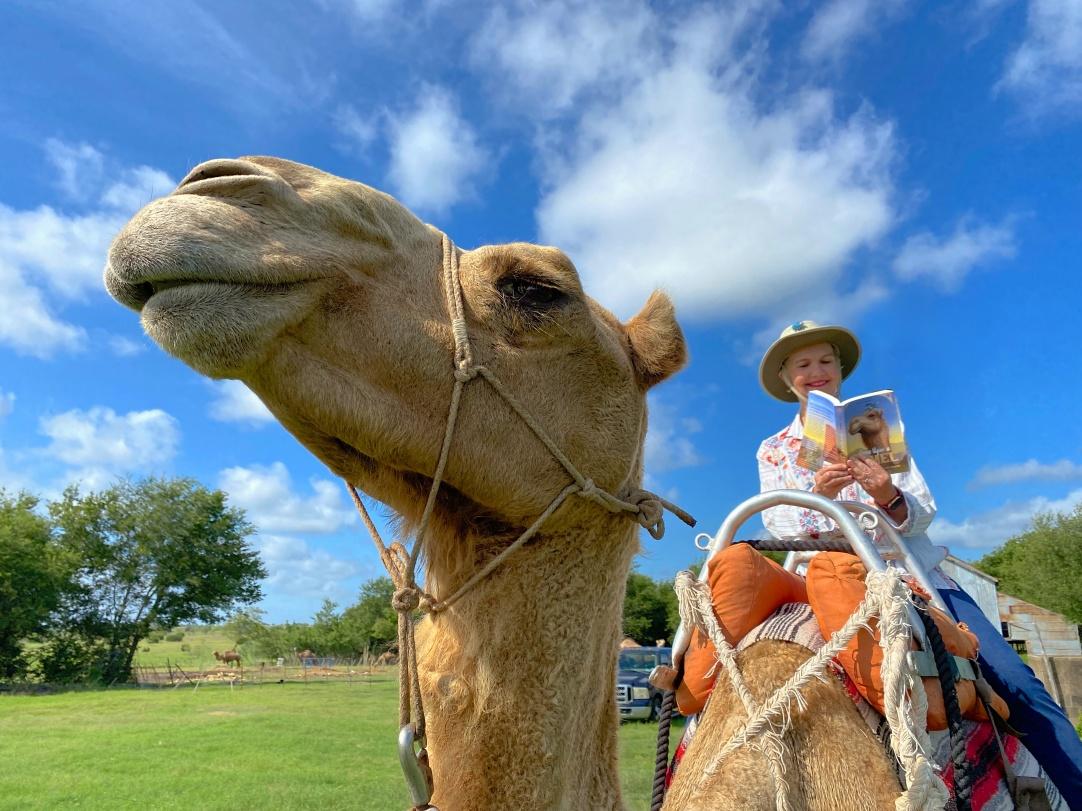 Kathi riding a camel named Richard at Texas Camel Corps. Photo credit: Doug Baum